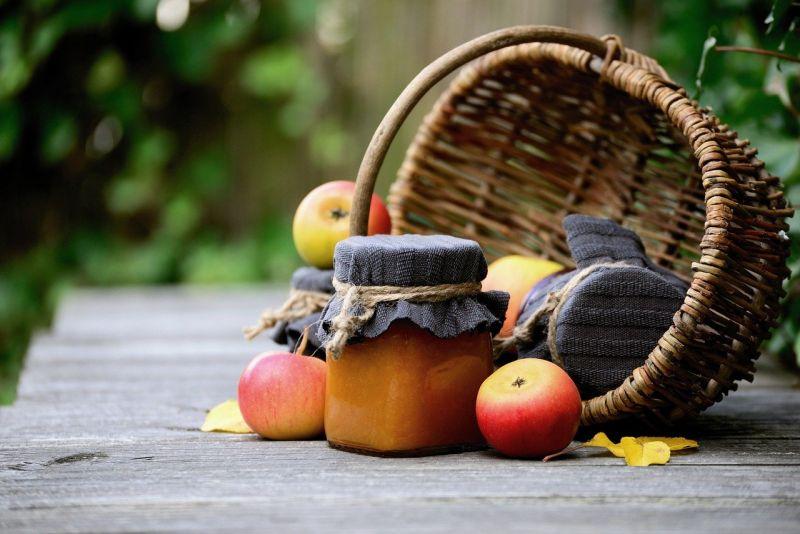 Konserwowanie plonów z ogródka – ekologiczne smakołyki nie tylko dla niemowląt i dzieci