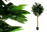 Drzewko sztuczne dekoracyjne - Mango 180 cm