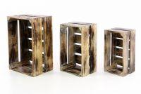 Zestaw drewnianych skrzynek VINTAGE DIVERO - 3 szt. kolor brązowy