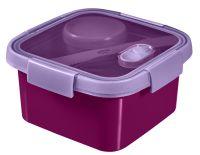 Pudełko podróżne z SMART TO GO 1.1L - kolor fioletowy